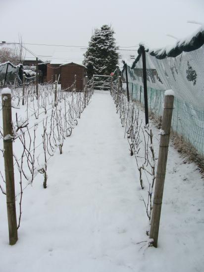 Que de neige ce 15 février